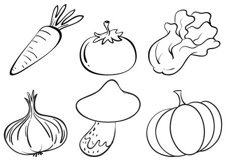 Illustration of the doodle designs of different vegetables on a white background  Stock Vector - 19389880