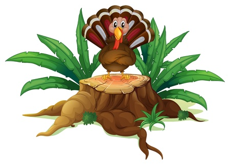 illegal logging: Illustration of a turkey above the stump on a white background Illustration