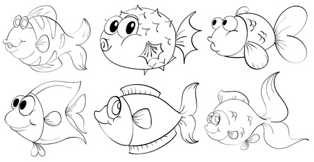 Illustrtaion of the different doodle design of fishes on a white background  Vector
