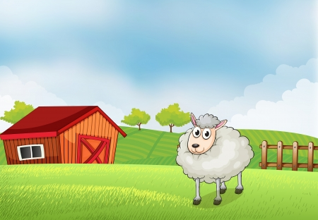rootcrops: Illustration of a sheep in the farm with barn and wooden fence at the back