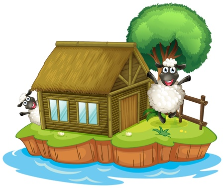 barn wood: Illustration of an island with a native house and two sheeps on a white background Illustration