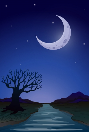 pic  picture: Illustration of a moonlight view