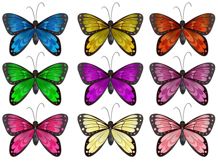 nine: Illustration of the butterflies in different colors on a white background