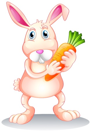 Illustration of a fat bunny holding a carrot on a white background Illustration