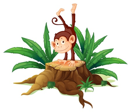 illegal logging: Illustration of a stump with a playful monkey on a white background