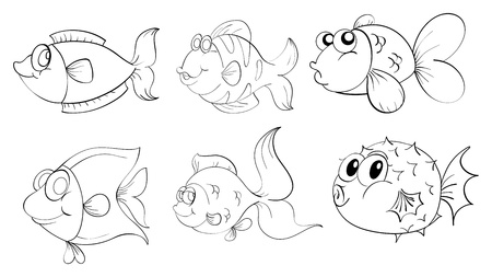 sea creatures: Illustration of the different fishes in a doodle design on a white background
