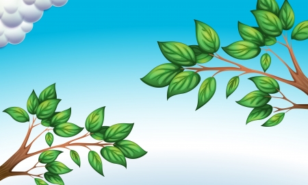 Illustration of the green leaves and the clear blue sky Stock Vector - 19645318