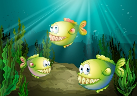 seaweeds: Illustration of the three piranhas under the sea with seaweeds