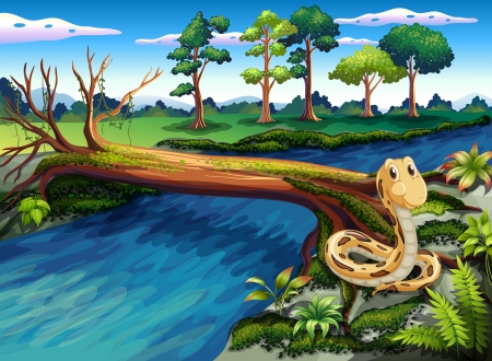 coldblooded: Illustration of a snake at the riverbank Illustration