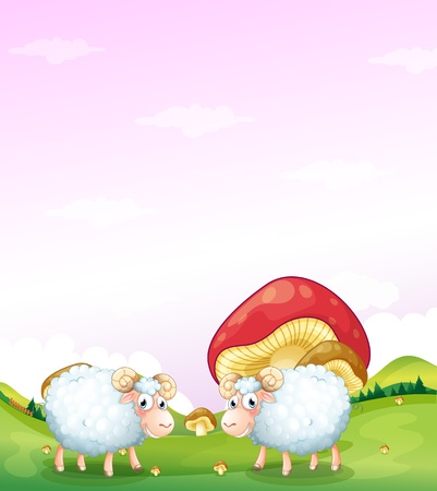 sheeps: Illustration of the two sheeps at the hill with mushrooms Illustration