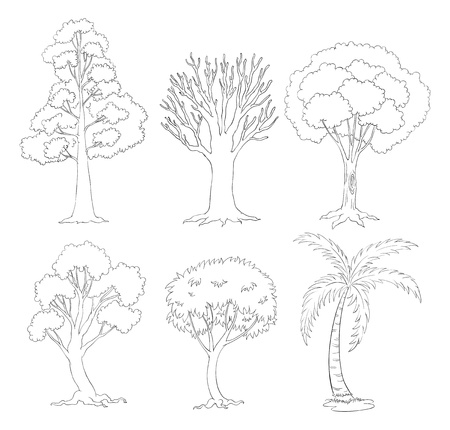 Illustration of a doodle set of trees on a white background  Stock Vector - 19645163