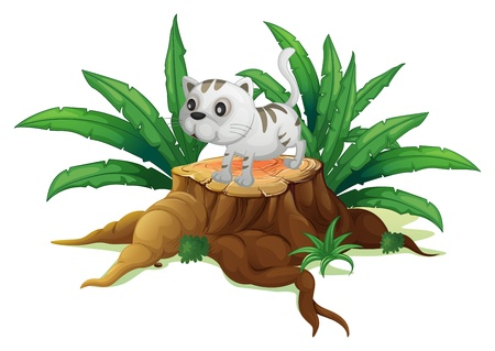 tree stump: Illustration of a cute cat on a stump with leaves on a white background