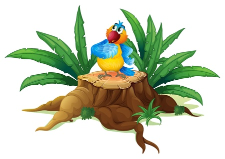 Illustration of a colorful parrot standing on a stump with leaves on a white background Stock Vector - 19645421