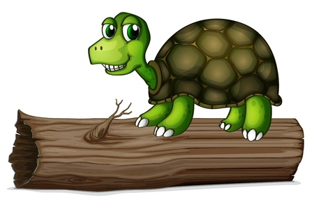 hollow: Illustration of a turtle above the wood on a white background