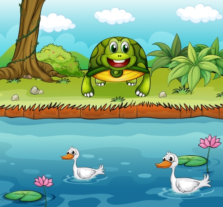 Illustration of a turtle beside the river with ducks Vector