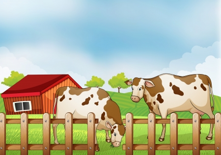milking: Illustration of a farm with two cows inside the fence Illustration
