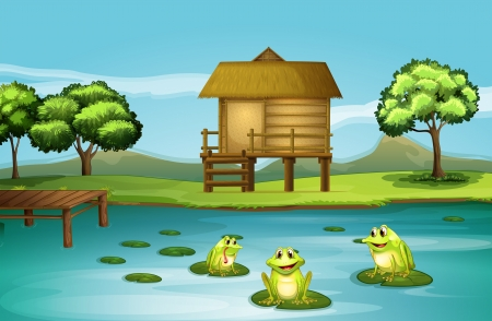 Illustration of a pond with three playful frogs Vector