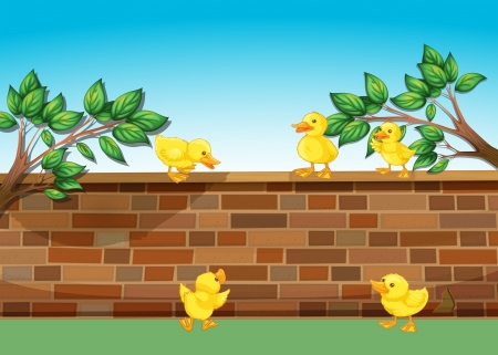 elliptic: Illustration of a wall with five ducklings