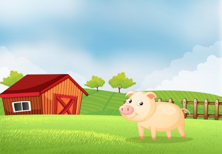 rootcrops: Illustration of a pig in the farm with a wooden house at the back