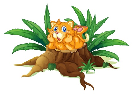 illegal logging: Illustration of a cat above a stump with leaves on a white background