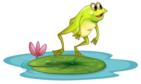 Illustration of a frog at the pond on a white background Vector
