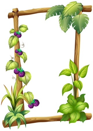 elliptic: Illustration of a frame made of wood with vine plants on a white background