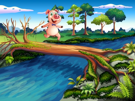 deep roots: Illustration of a female pig crossing the river Illustration