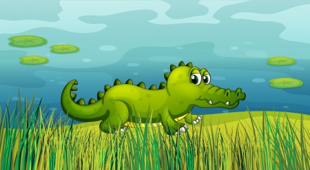 lilypad: Illustration of a crocodile beside the pond  Illustration