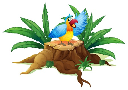illegal logging: Illustration of a colorful parrot above a stump on a white background