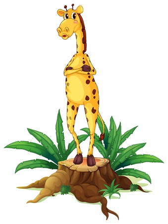 Illustration of a giraffe standing above a stump on a white background Stock Vector - 19874496