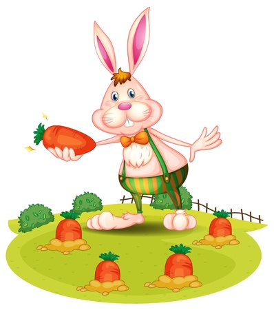 Illustration of a rabbit at the farm with carrots on a white background
