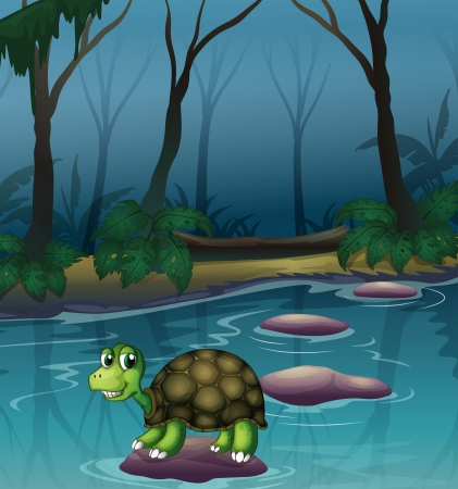 river rock: Illustration of a turtle at the lake in the forest Illustration