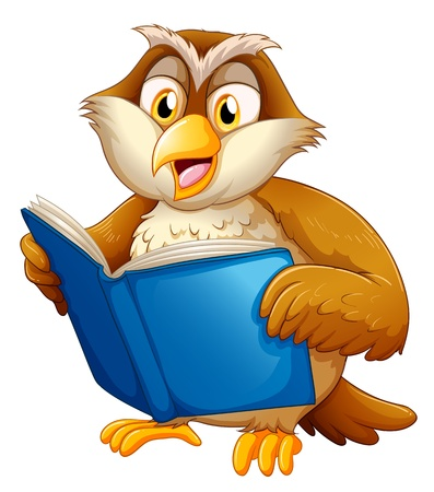 nocturnal animal: Illustration of an owl reading on a white bakcground