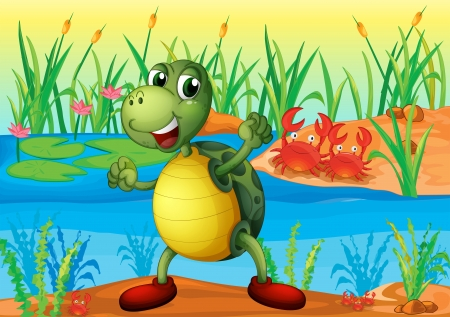 Illustration of a turtle in the pond with two crabs at the back  Vector