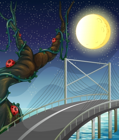 steel bridge: Illustration of a road above the river near the tree with bugs
