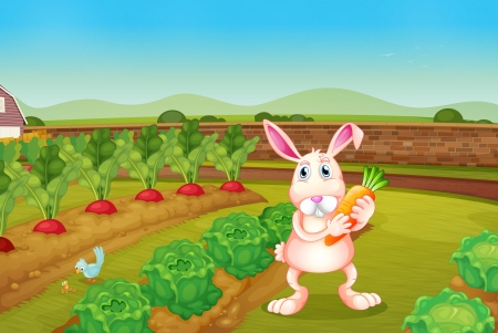 Illustration of a bunny holding a carrot along the garden  Vector