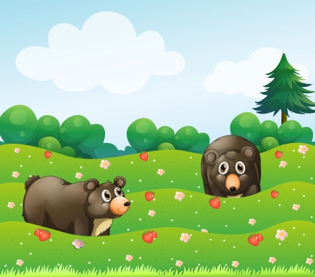 Illustration of the two bears at the garden  Vector