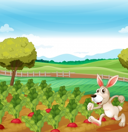 ricefield: Illustration of a bunny running in the farm Illustration