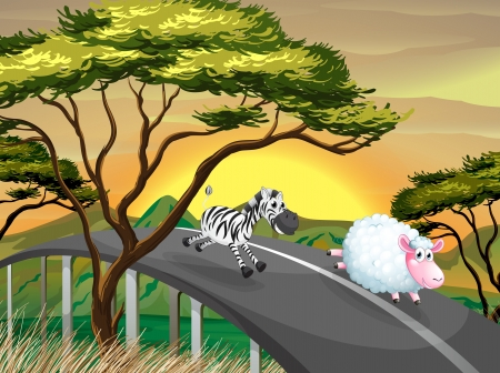 Illustration of a zebra and a sheep running at the road Vector