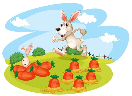 Illustration of a bunny running along the garden with carrots on a white background