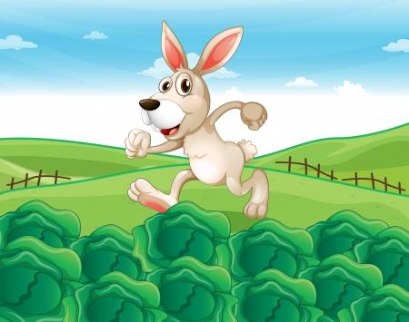 hillside: Illustration of a bunny running at the farm