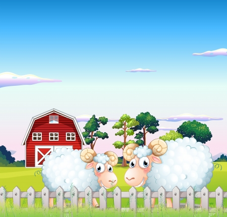 sheeps: Illustration of the two sheeps inside the fence with a barn at the back  Illustration