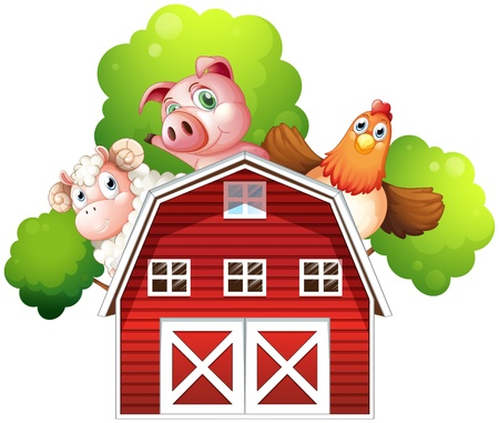 barnhouse: Illustration of a sheep, a pig and a chicken hiding at the back of a barn on a white background