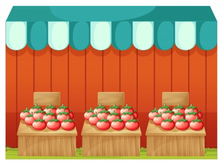 Illustration of a stand with tomatoes and empty signboards on a white background Vector