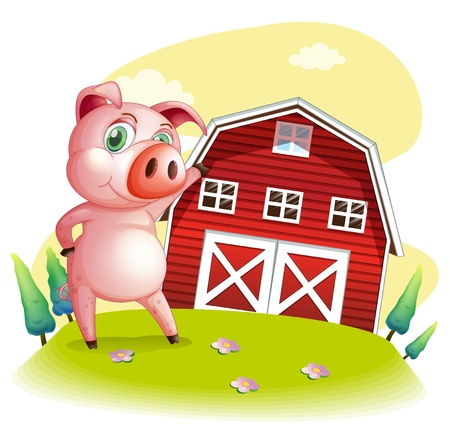 barnhouse: Illustration of a pig at the farm pointing the barnhouse on a white background Illustration