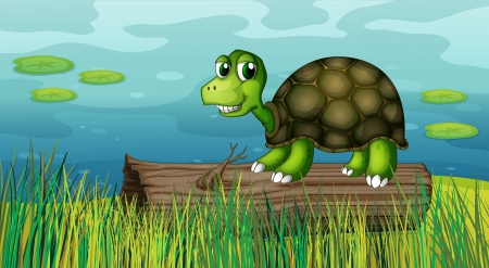 Illustration of a turtle above a wood at the riverbank