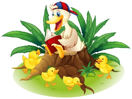 Illustration of a duck reading on a stump with her ducklings on a white background  Vector