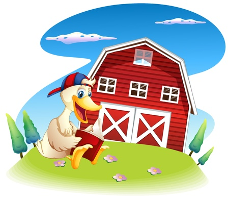 Illustration of a duck reading near the barnhouse on a white background Vector
