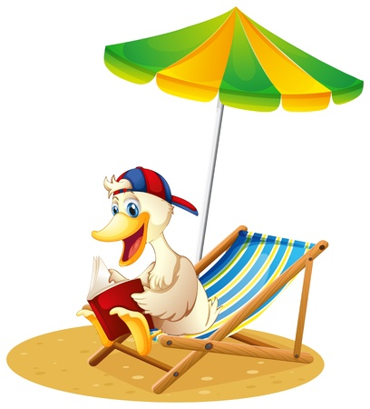 Illustrarion of a duck reading at the beach on a white background