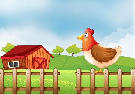 rootcrops: Illustration of a hen at the field with a barnhouse Illustration